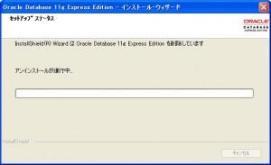 OracleXEuninstall4